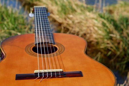 guitare dans la nature